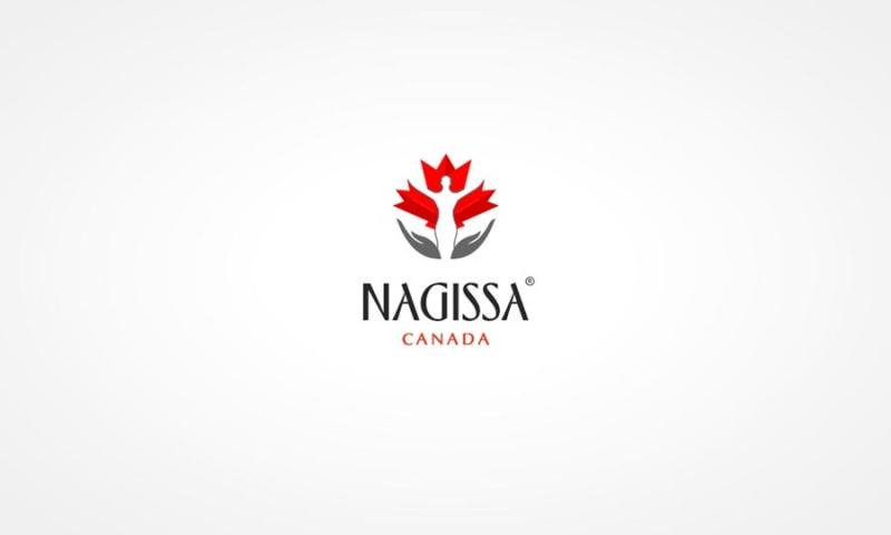 graphic-design-web-design-digital-marketing-hiline-lahore-pakistan-Nagissa-Canada_logo