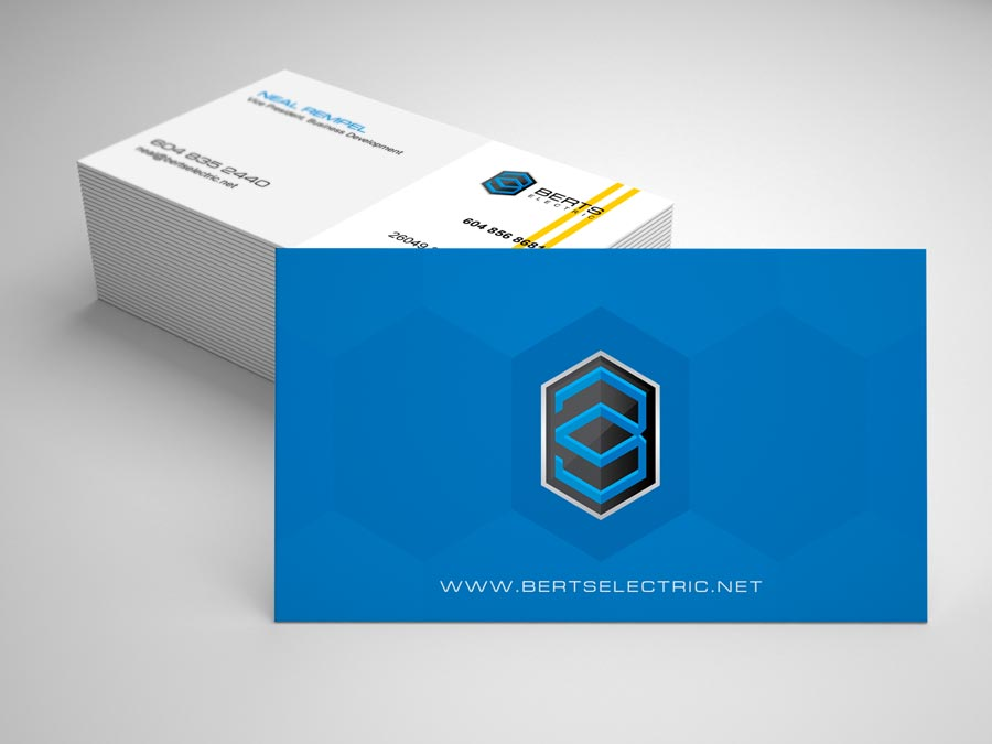 graphic-design-web-design-digital-marketing-hiline-lahore-pakistan-berts-electric-buss-card