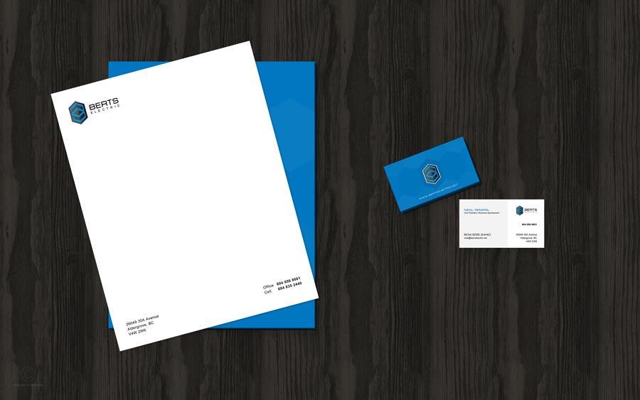 graphic-design-web-design-digital-marketing-hiline-lahore-pakistan-berts-electric-slide-5